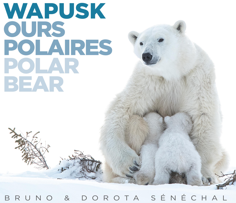 Le Livre WAPUSK - OURS POLAIRES