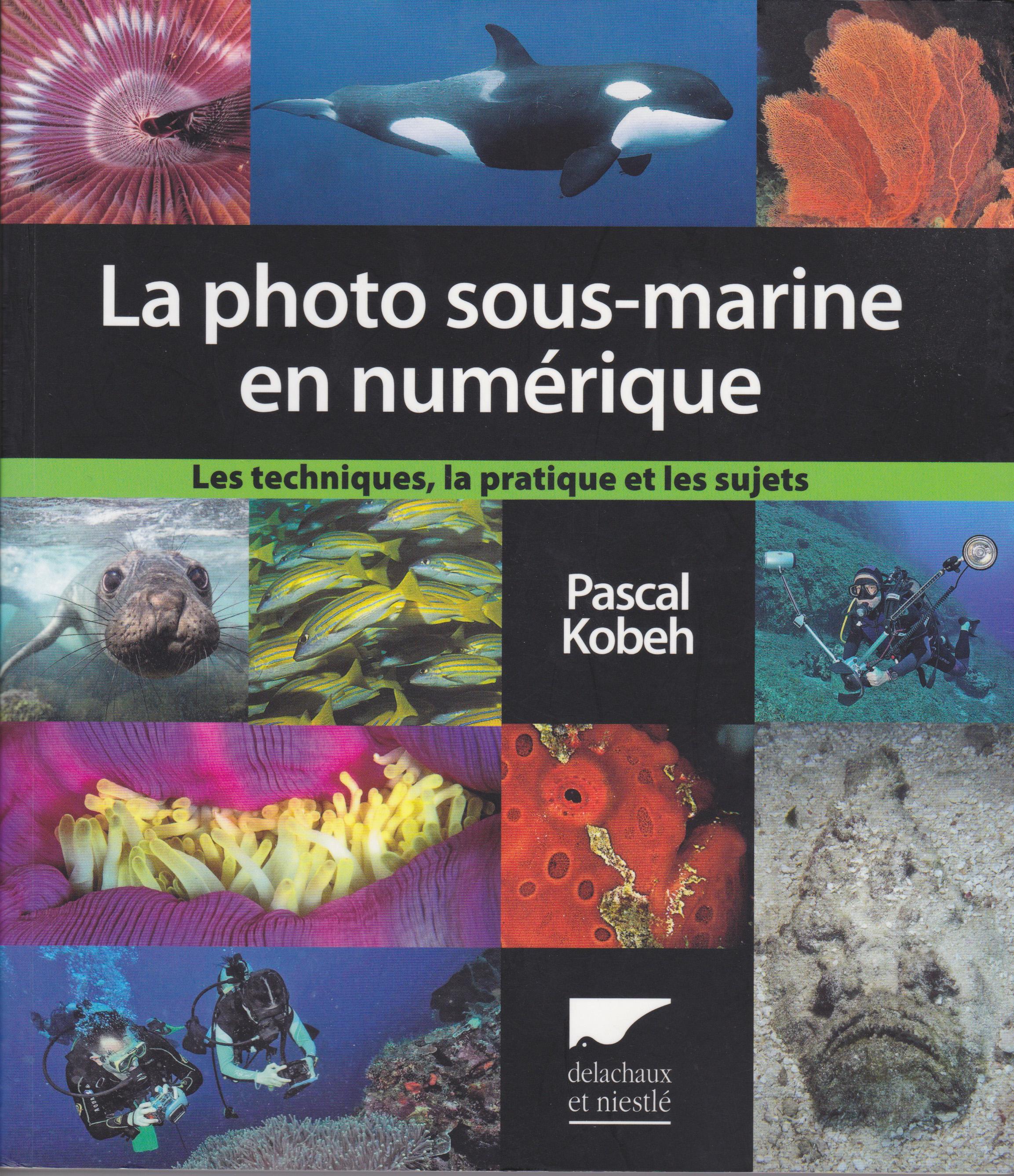 La photo sous-marine en numérique