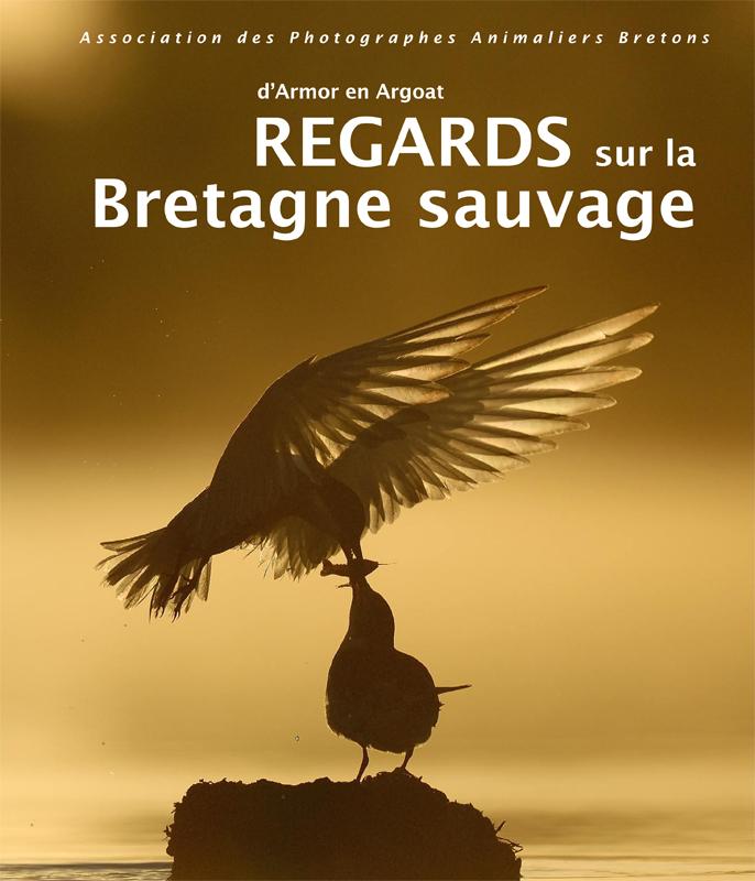 Regards sur la Bretagne sauvage