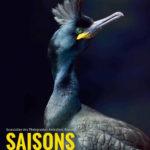 """Saisons, Temps de """"pause"""" sur la Bretagne sauvage"""
