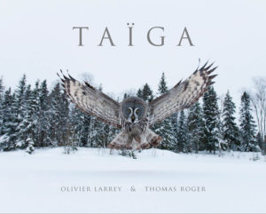 Taïga, regards sur la nature finlandaise