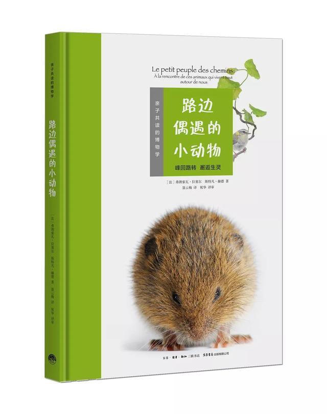 Le petit peuple des chemins Version Chinoise (2019)