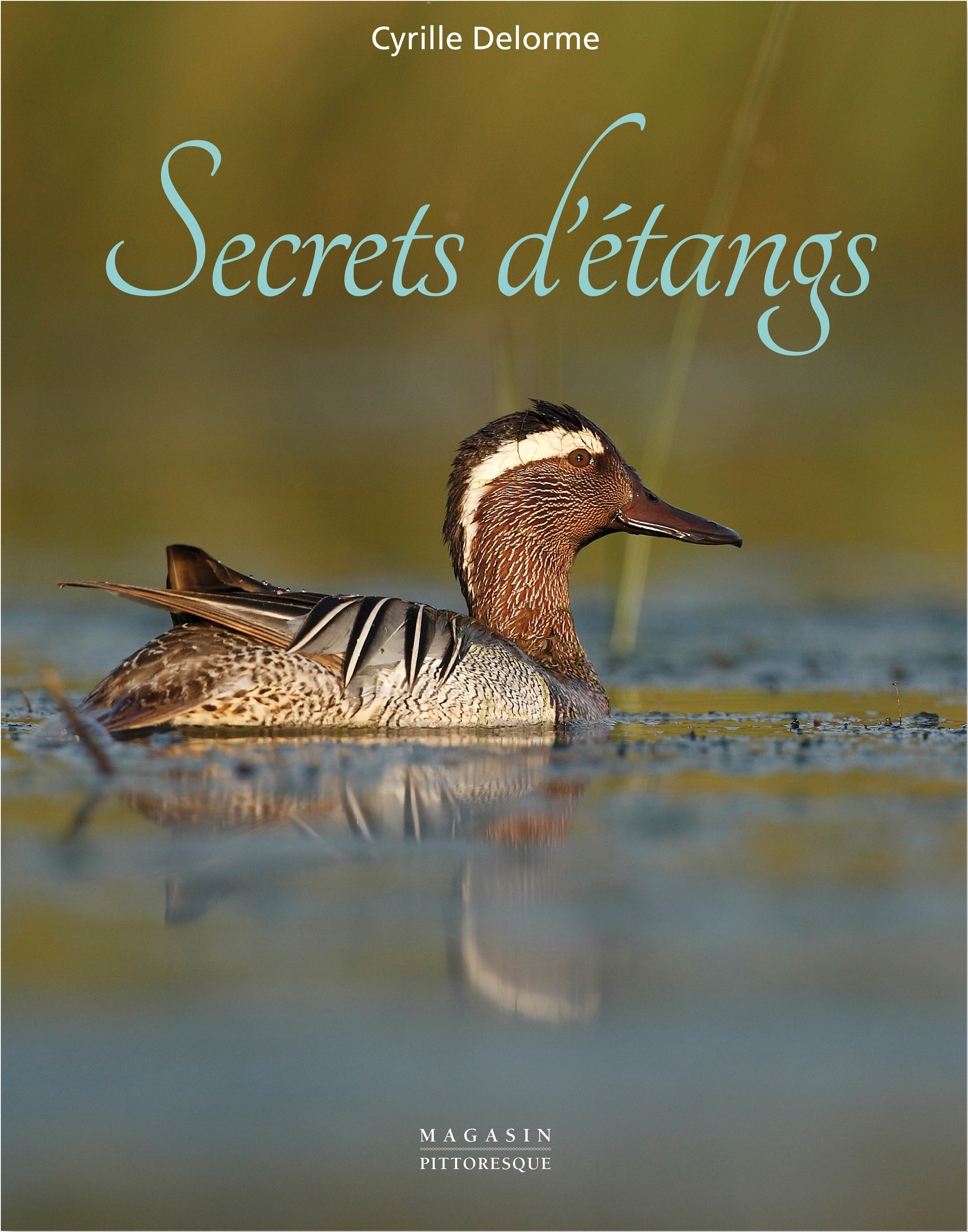 Secrets d'étangs