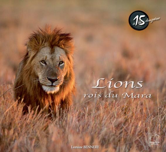 Lions rois du Mara
