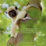 Madagascar, un paradis aux abois