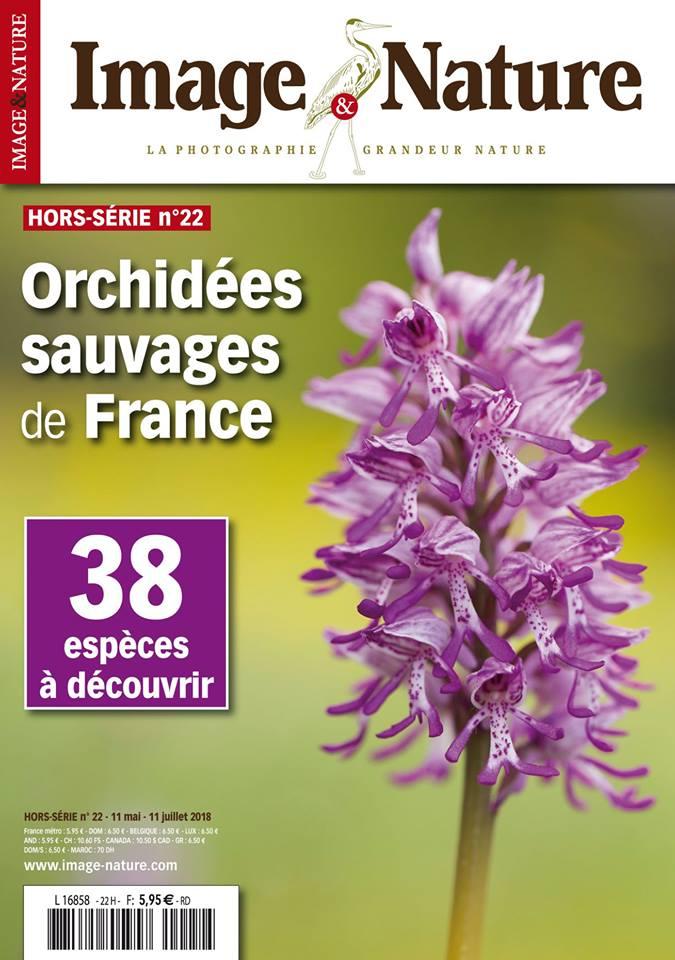 Portfolio Orchidées