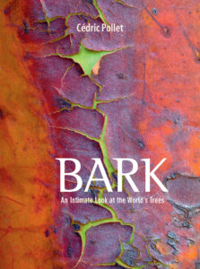 BARK, An Intimate Look at the World's Trees