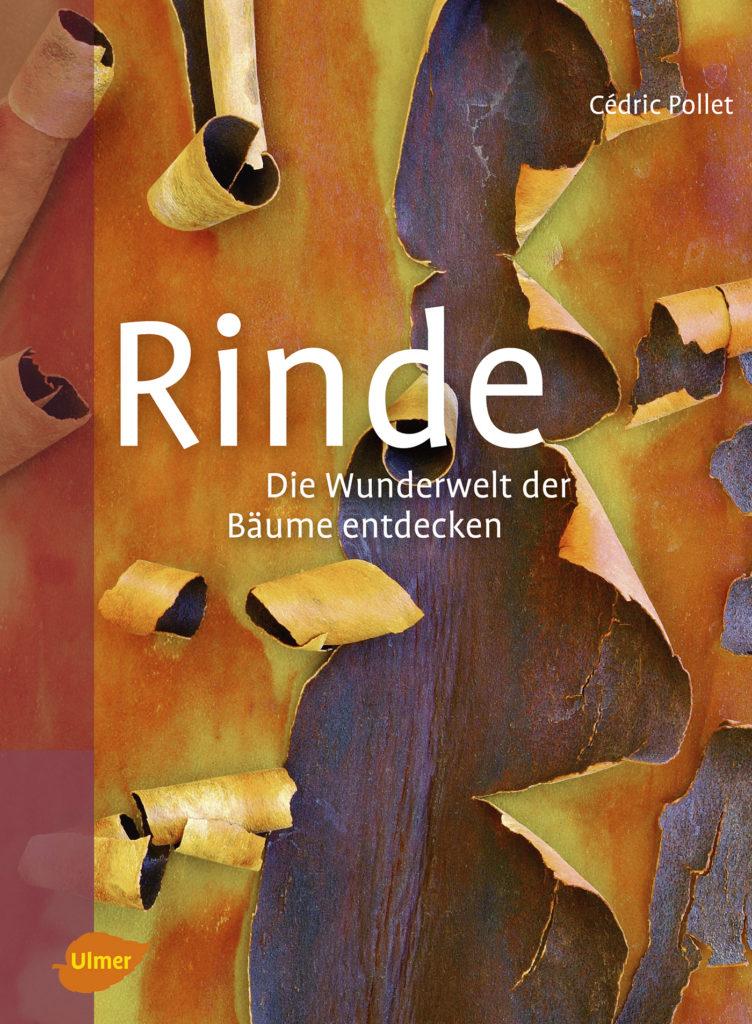 RINDE, Die Wunderwelt der Bäume entdecken