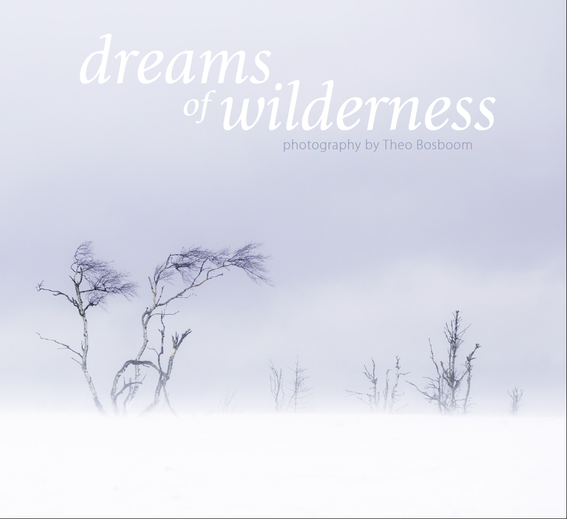 Dreams of wilderness