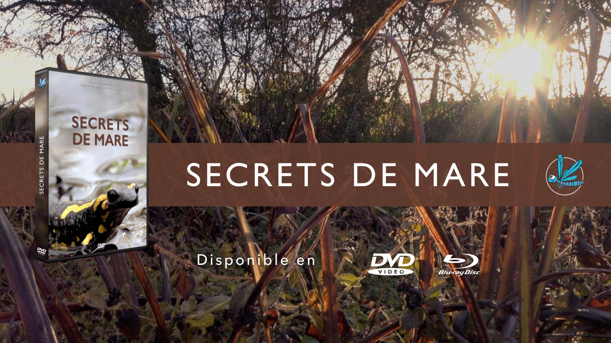 """Secrets de mare"""