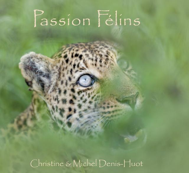 Passion Félins