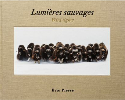 LUMIERES SAUVAGES - WILD LIGHTS