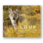 Loup, une vie en meute dans les Ecrins