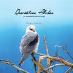 Rescòntres Aladas, les oiseaux de la plaine d'Ariège