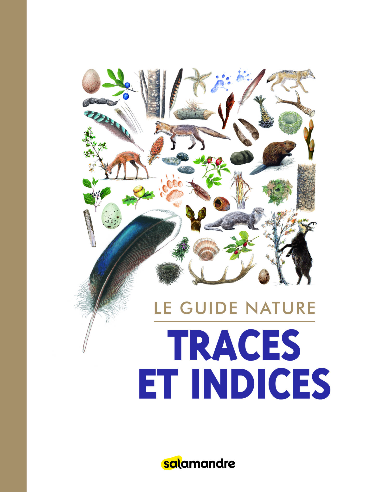 Guide nature Traces et Indices