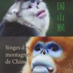 Singes des montagnes de Chine
