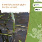 Plan Régional d'Action en faveur du Sonneur à ventre jaune